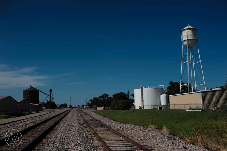 Texas Longhorn ranch family documentary in Celina TX (1)